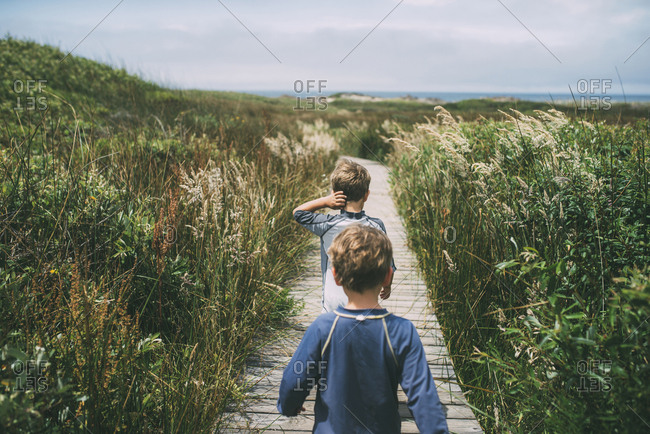 Rear view of brothers walking on boardwalk amidst plants at  Nuevo State Park