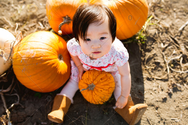 Baby sitting with pumpkins in a patch