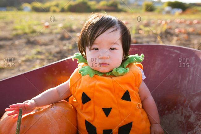 Baby girl dressed as a pumpkin sitting in a wheelbarrow