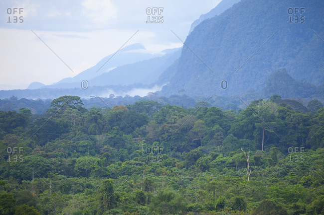 Scenic mountains above tropical rainforest