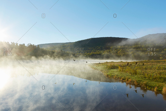 Scenic view, Colgate Lake Wild Forest, Catskill Park, New York State, USA