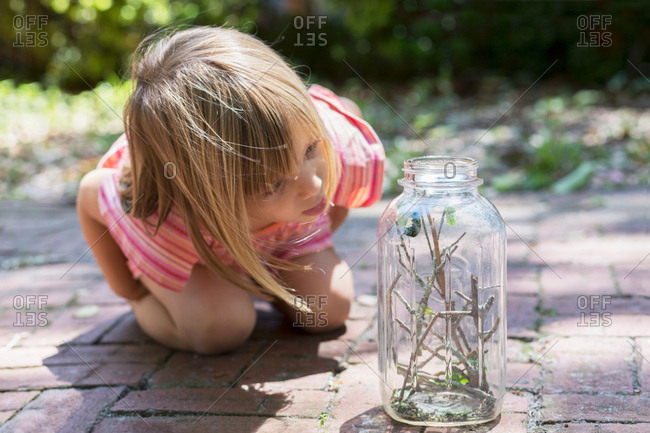 Girl leaning forward to watch caterpillar jar in garden