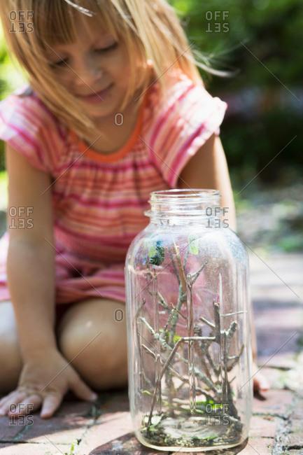 Girl kneeling to watch caterpillar jar in garden