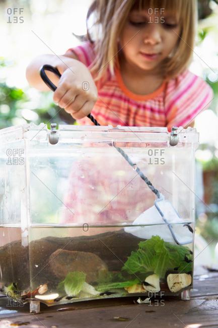 Girl scooping fishing net in plastic tadpole pond on garden table