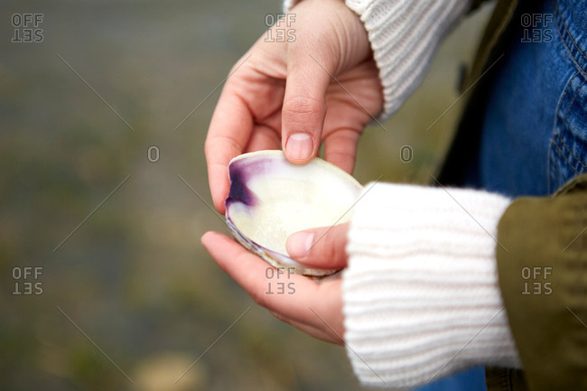 Close up of woman's hands holding seashell