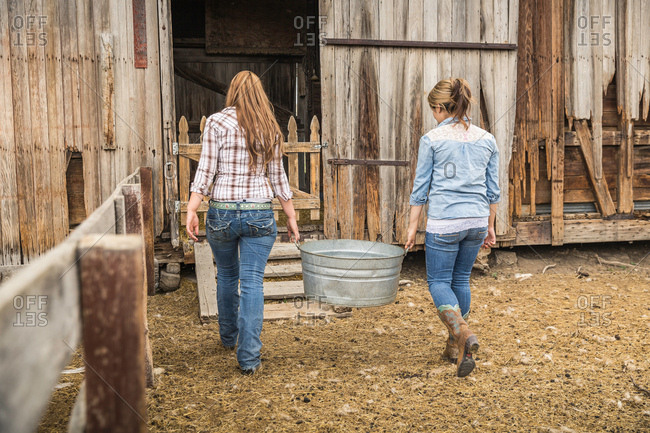 Rear view of two young women carrying animal feed to ranch barn, Bridger, Montana, USA