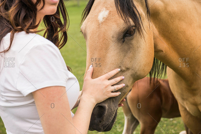 Young woman petting horse, mid section, close-up