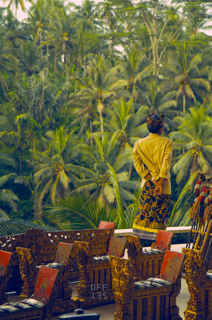 Man standing in the Ubud forests