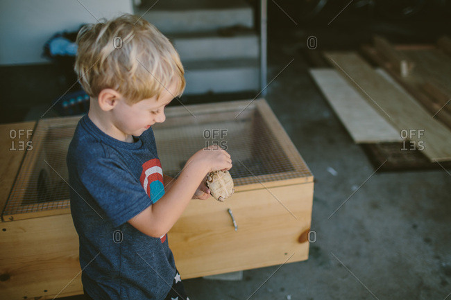 Boy playing with turtle