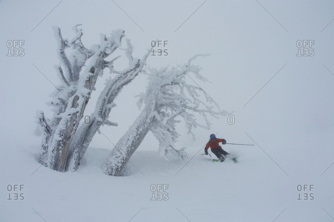A teen boy skiing in foggy, whiteout conditions near rime covered trees