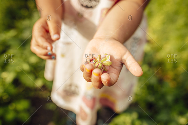 Girl (2-3) holding flower in hand
