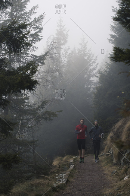 Men jogging on a forest trail