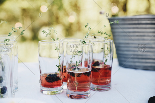 Drinks served with blackberries and garnished with herb sprig