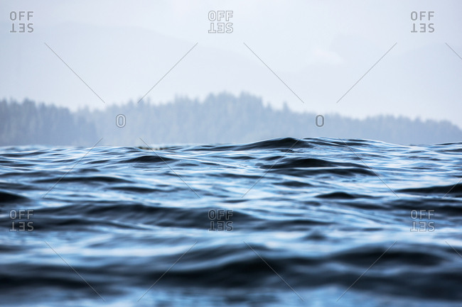 Surface of water near shore