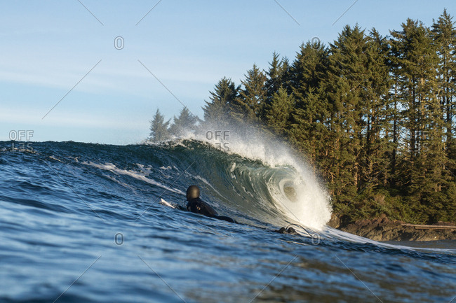 Surfer near forested shore