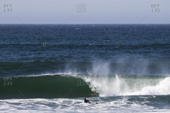 Surfer on sea near wave