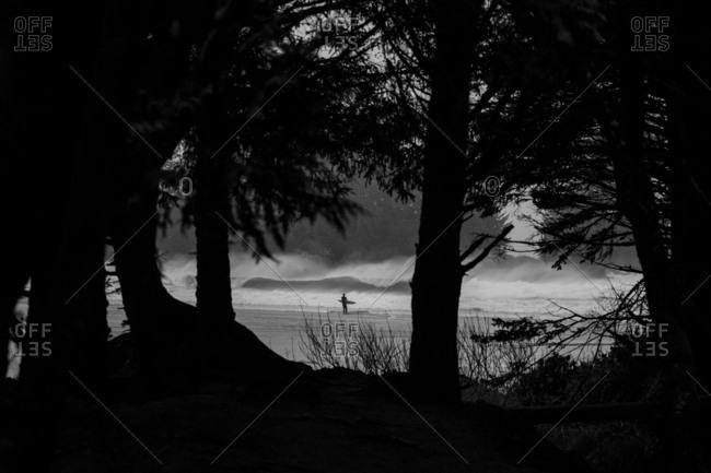 Surfer seen through forest