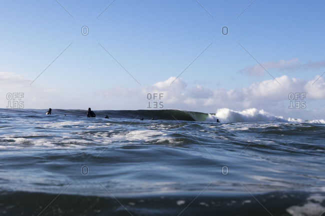 Surfers near a rising wave