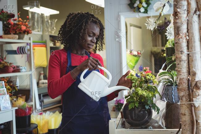 Female florist watering plants
