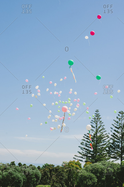 Balloons released during an outdoor wedding