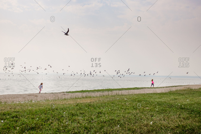 Girls running on lakeshore with a flock of birds flying overhead