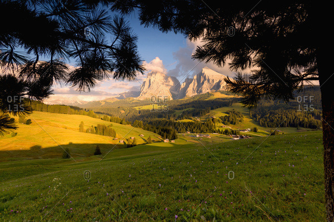 Italy, Trentino-Alto Adige, Bolzano district, South Tyrol, Alpe di Siusi, Alps, Dolomites,