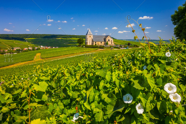 France, Grand Est, Chavot-Courcourt, Champagne, Marne, Chavot church and Champagne vineyards in summer