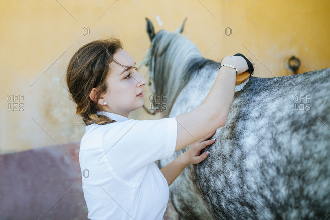Young woman grooming horse