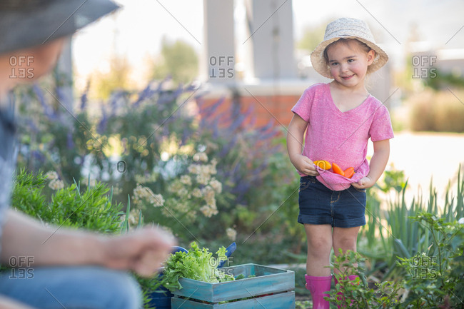 Father and daughter in garden, daughter collecting vegetables in t-shirt
