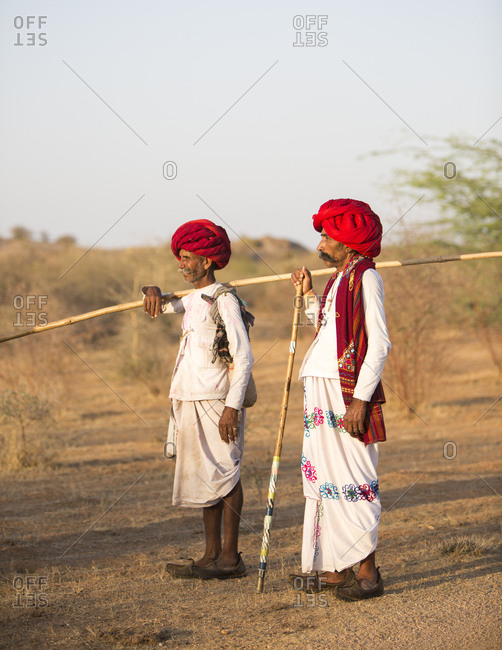 Jawai, Rajasthan, India - May 19, 2015: Rabari herdsmen at sundown rounding up their goats