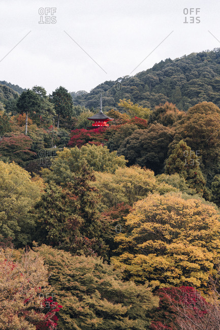 Japanese landscape with red temple