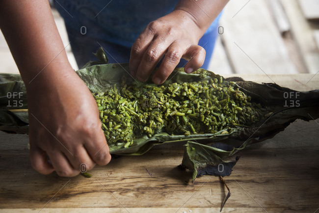 Woman opening a charred banana leaf with fiddlehead fronds