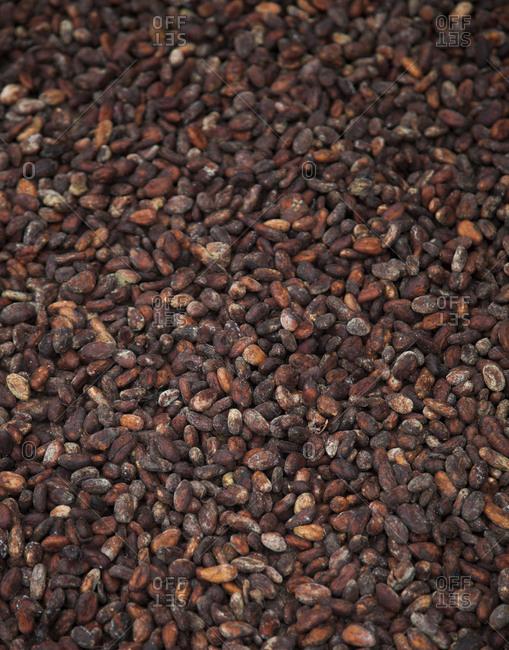 Raw cocoa beans, Quito, Ecuador