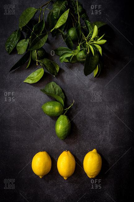 Fresh lemons on dark table