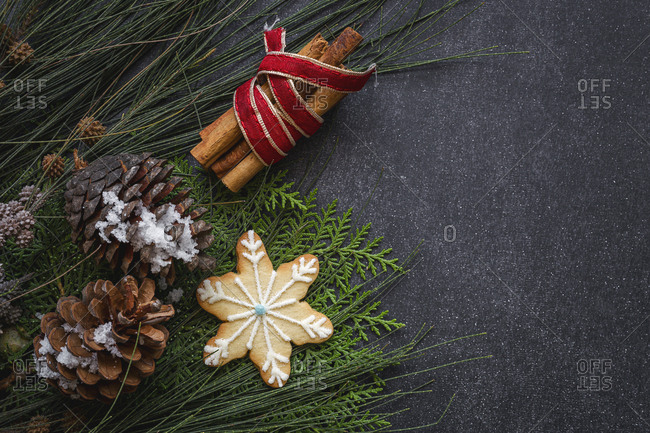 Pine cones and holiday cookie