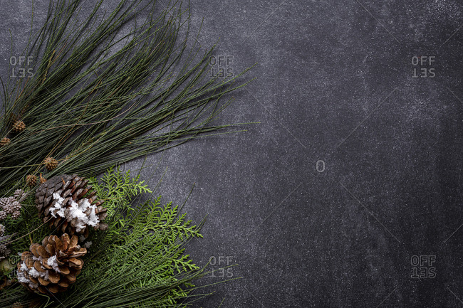 Pine cones and winter greenery