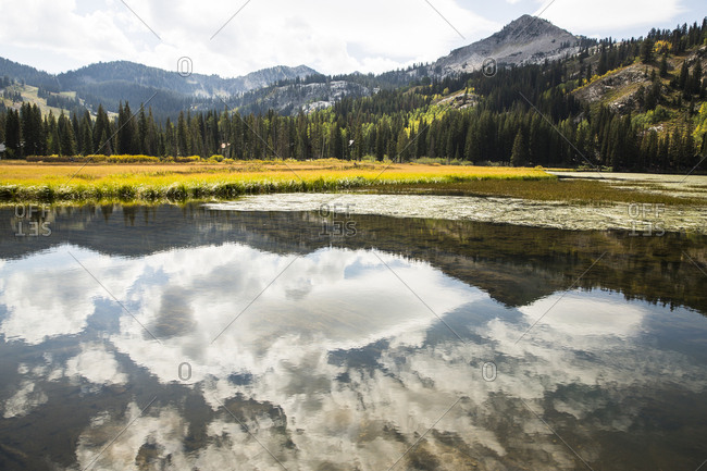 Scenic view of mountains and trees reflected in lake