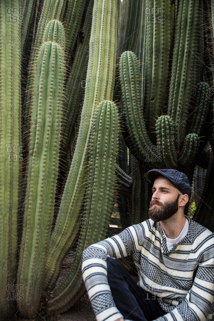 Young trendy man in cap sitting near huge thorny cacti and looking away.