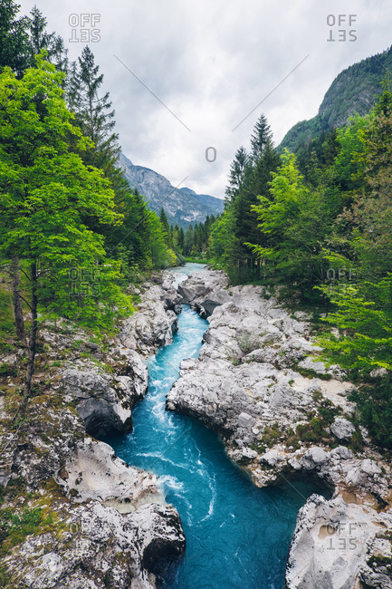 View to small blue river streaming in forest in mountains.