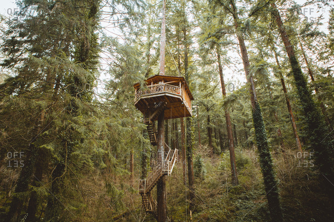 Treehouse above ground with stairs running down on background of woods.