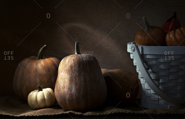 Pumpkins stored in the barn