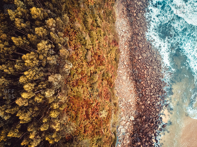 Aerial view of a rocky coast