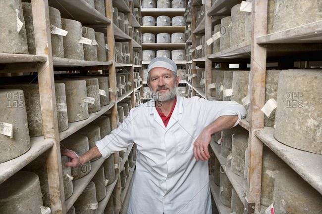 Portrait of cheese maker in cellar with aged farmhouse cheddar cheese wheels