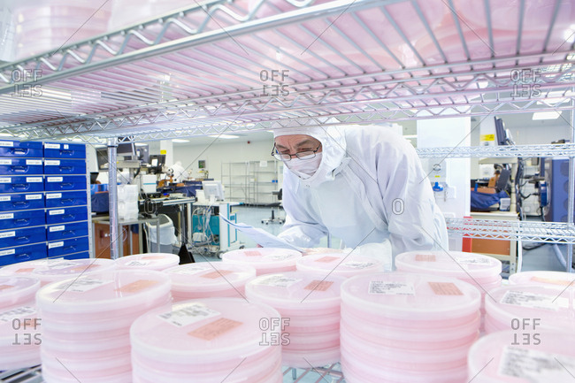 Scientist in clean suit checking batches of silicon wafers in laboratory