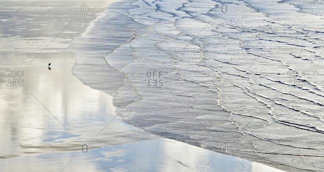 Aerial view surfer walking along wet beach and ocean waves