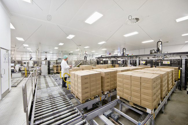 Worker behind boxes at food packaging production line