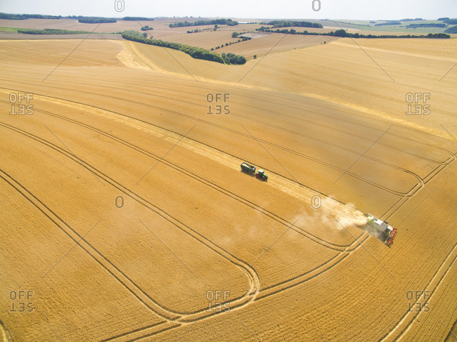 Aerial landscape view of combine harvester and tractor trailer in sunny golden barley field