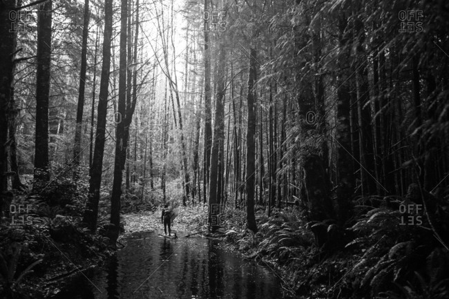 Man walking through forest with surfboard