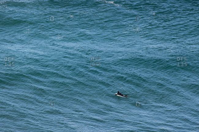 Surfer paddling on board in blue water