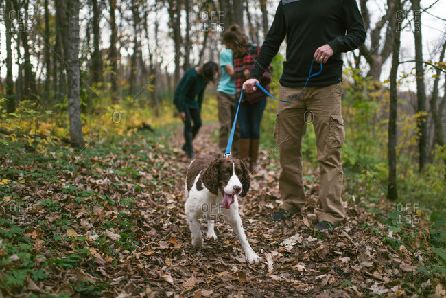 Family walking with dog on hiking trail